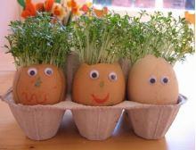 """Create With Christa: """"Egg"""" Planting"""